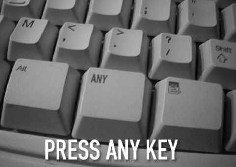 Avatar for The Any Key
